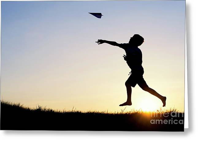 Let It Fly Greeting Card by Tim Gainey