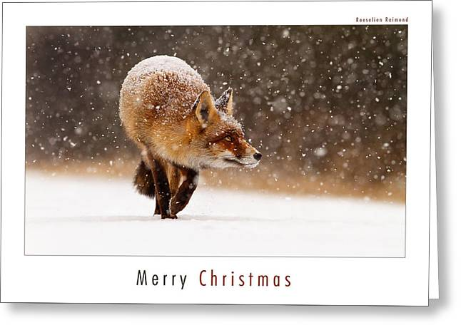 Let It Snow 2 - Christmas Card Red Fox In The Snow Greeting Card