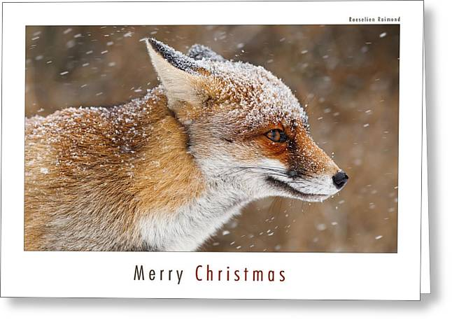 Let It Snow 5 - Christmas Card Red Fox In The Snow Greeting Card by Roeselien Raimond