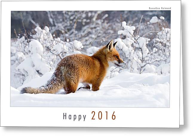 Let It Snow 5 - New Years Card Red Fox In The Snow Greeting Card