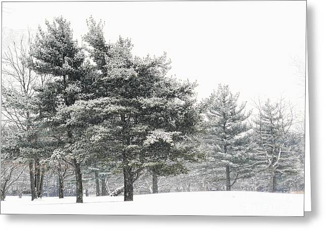Let It Snow Greeting Card by Jeff Breiman