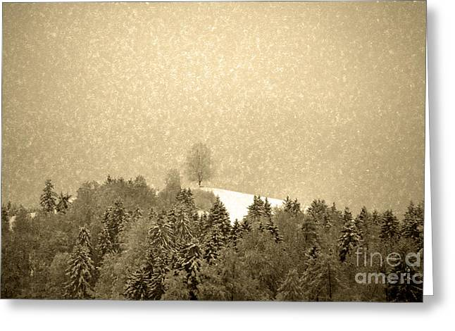 Greeting Card featuring the photograph Let It Snow - Winter In Switzerland by Susanne Van Hulst