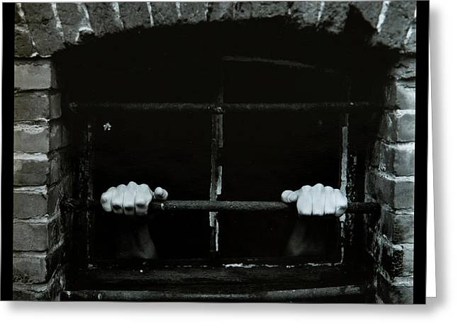 Let Me Out Greeting Card by Dirk Ercken