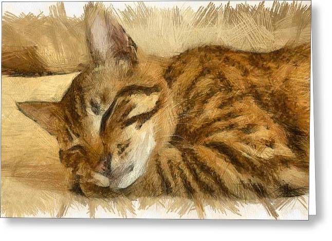 Let Sleeping Cats Lie Greeting Card by Tracey Harrington-Simpson
