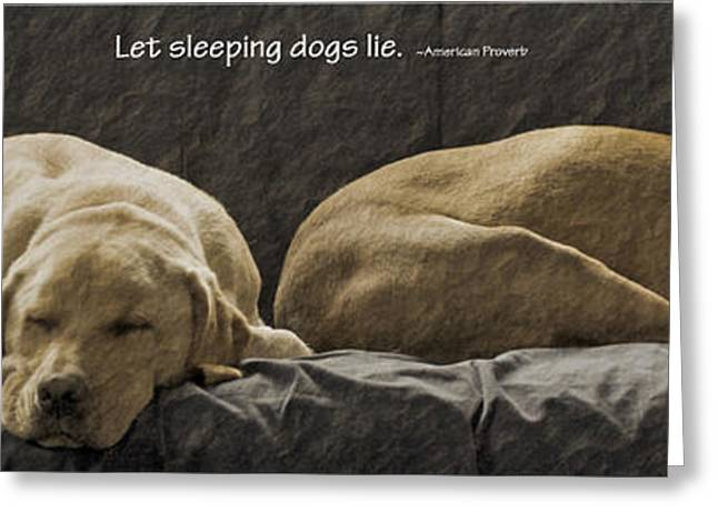 Sleeping Dogs Greeting Cards - Let sleeping dogs lie Greeting Card by Gwyn Newcombe