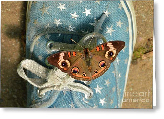 Let Your Spirit Fly Free- Butterfly Nature Art Greeting Card