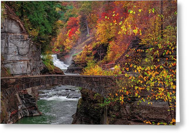 Letchworth Lower Falls Greeting Card by Mark Papke