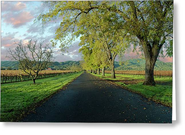 Let's Drive Through The Vineyard Greeting Card by Jon Neidert