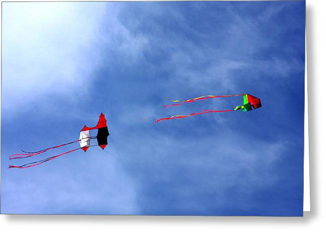 Let's Go Fly 2 Kites Greeting Card