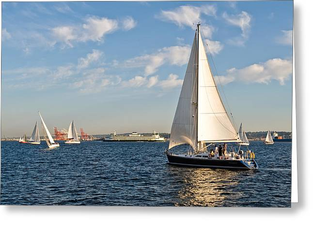 Lets Sail Greeting Card by Tom Dowd