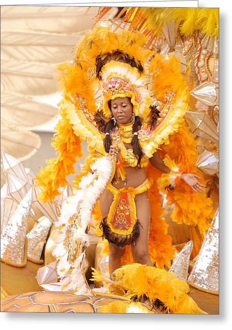 Lets Samba Greeting Card