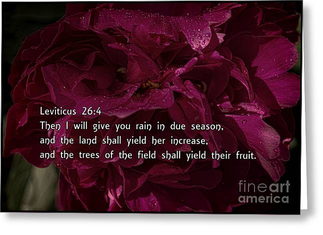 Leviticus  Greeting Card by Janice Rae Pariza