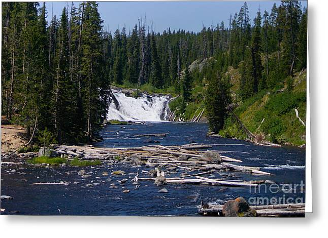 Lewis Falls Yellowstone Greeting Card