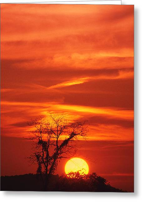 Lexington Sunset Greeting Card