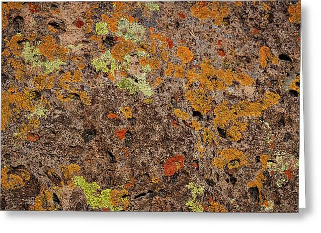 Lichen At Bandelier - New Mexico Greeting Card by Stuart Litoff