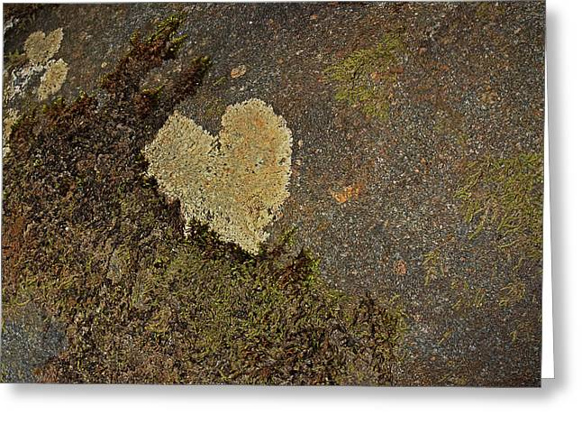 Greeting Card featuring the photograph Lichen Love by Mike Eingle