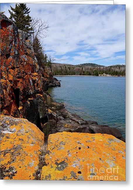 Lichen Rocks Greeting Card by Sandra Updyke
