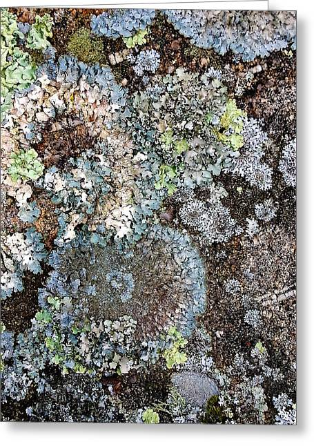 Lichens Greeting Card