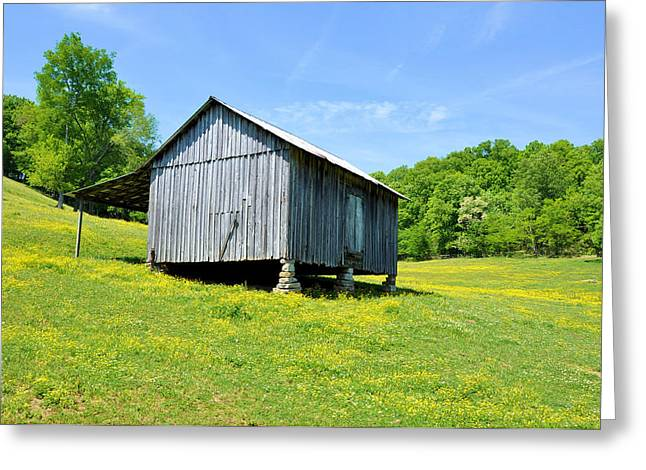 Lieper's Fork Cabin Greeting Card by Jan Amiss Photography