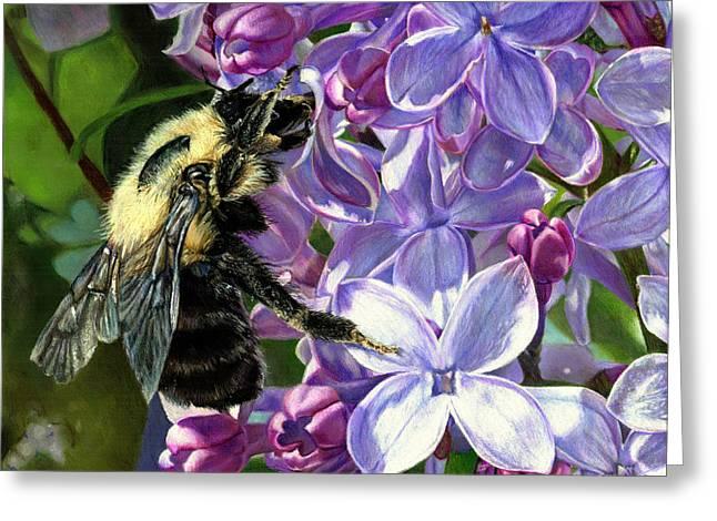 Life Among The Lilacs Greeting Card