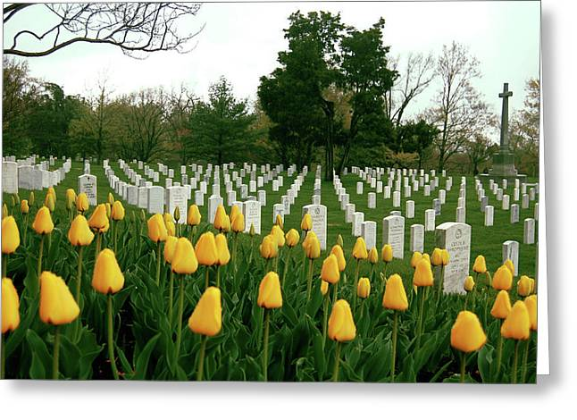 Life And Death At Arlington Greeting Card