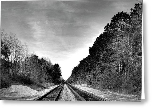 Life On The Rails Bnw Greeting Card by Skip Willits