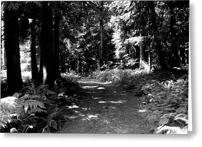 Life Tures  Bw Greeting Card by Ken Day