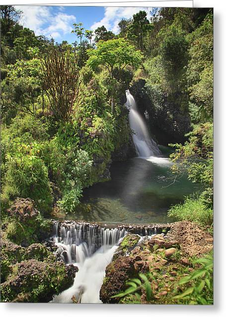 Life's Flow Greeting Card