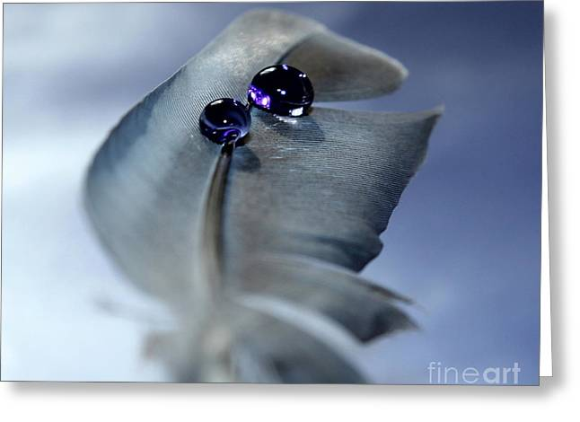 Life's Little Mysteries Greeting Card by Krissy Katsimbras