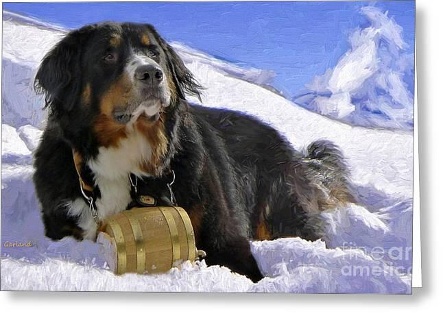 Lifesaver Dog Greeting Card