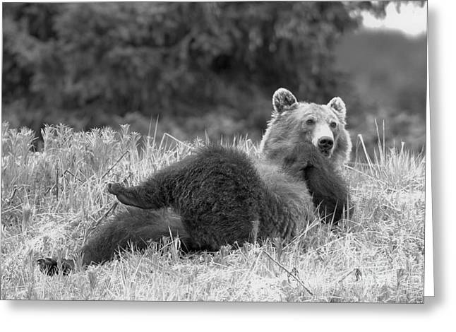 Lifting My Legs Black And White Greeting Card