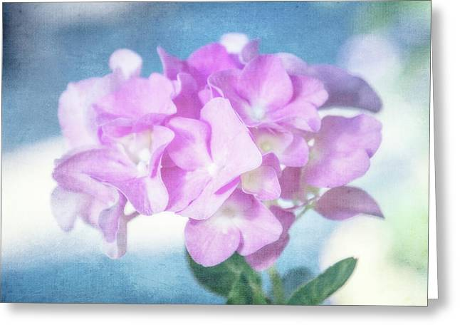 Light And Lovely Greeting Card