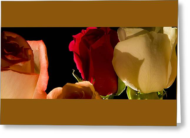 Light And Roses Greeting Card