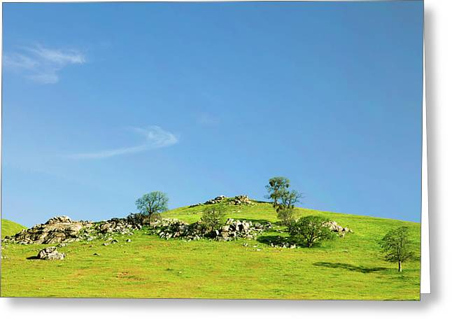 Greeting Card featuring the photograph Light And Shadows - Spring In Central California by Ram Vasudev