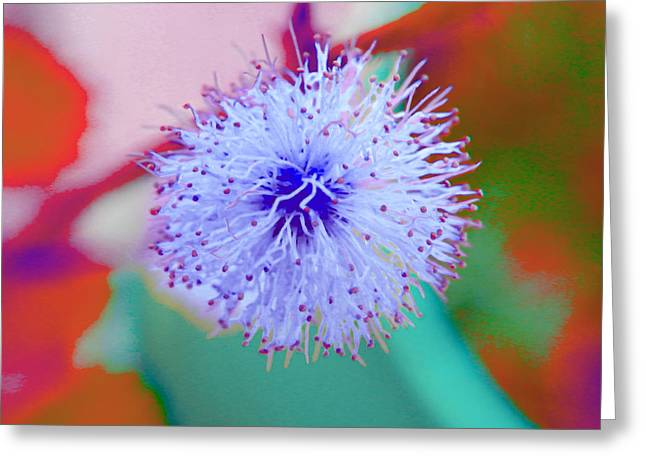 Light Blue Puff Explosion Greeting Card