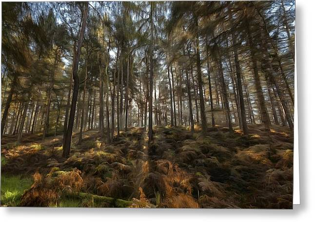 Light In The Forest Paint Greeting Card by Scott Carruthers