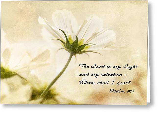 Light Greeting Card by Mary Jo Allen