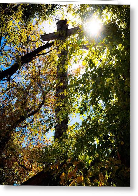 Light Of Day  Greeting Card