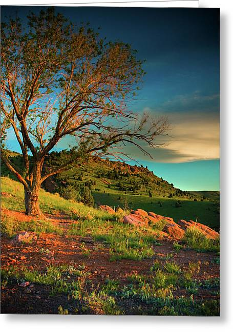 Greeting Card featuring the photograph Light Of The Hillside by John De Bord