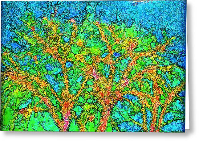 Greeting Card featuring the digital art Light Of The Radiant Sun - Trees In Boulder County Colorado by Joel Bruce Wallach