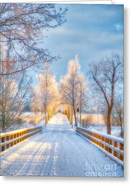 Light Of Winter Greeting Card