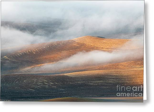 Light On The Hills Greeting Card by Mike Dawson