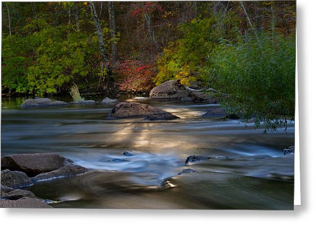 Light On The River Greeting Card