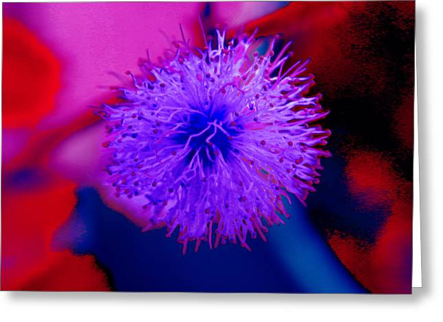 Light Purple Puff Explosion Greeting Card