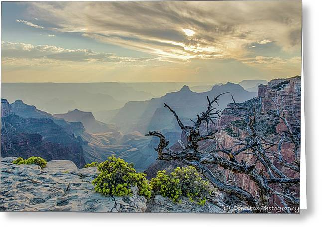 Light Seeks The Depths Of Grand Canyon Greeting Card