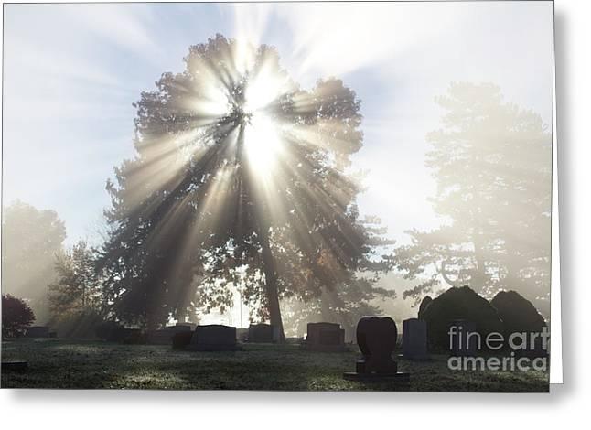Light Greeting Card by Tara Lynn