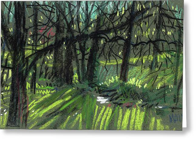 Light Through The Trees Greeting Card by Donald Maier