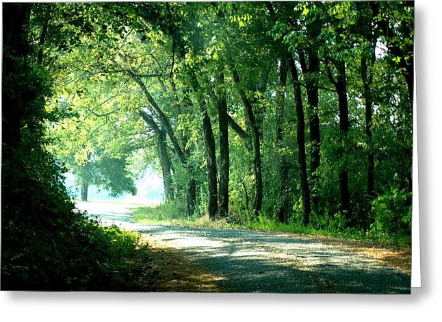 Lighted Path Greeting Card by Lynn Reid