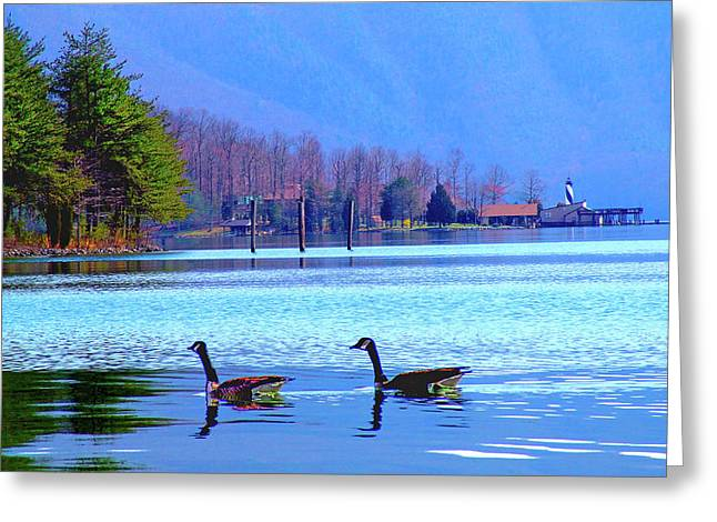 Lighthouse Geese, Smith Mountain Lake Greeting Card