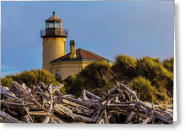 Lighthouse With Driftwood Greeting Card by Garry Gay